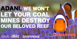 We are not targeting Adanis: Greenpeace Australia
