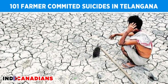 101 Farmer Commited Suicides Since Telangana's formation