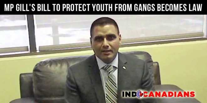 MP Parm Gill's Bill to Protect Youth From Gangs Becomes Law