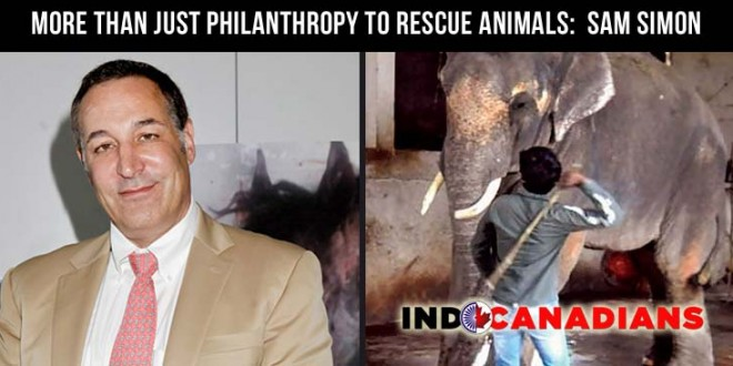 More than just philanthropy to rescue animals:  Sam Simon
