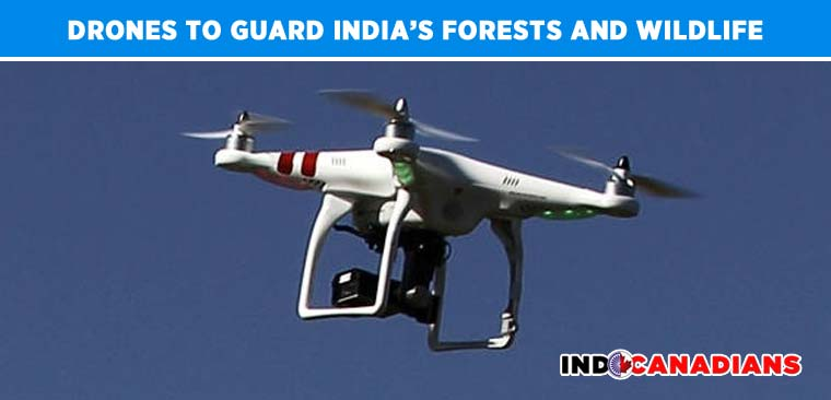 Drones to guard India's forests and wildlife