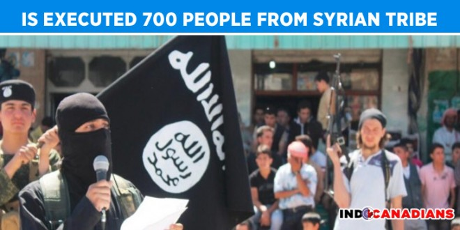 Islamic State Executed 700 People from Syrian Tribe: Human Rights Group