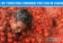 Tons of Tomatoes Crushed for Fun in Vadodara