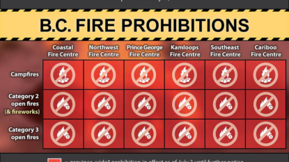 Campfires, open fires and fireworks banned throughout B.C.