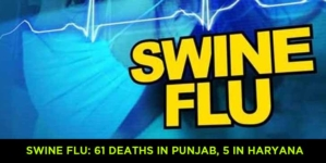 SWINE FLU: 61 DEATHS IN PUNJAB, 5 IN HARYANA
