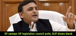 Samajwadi-Party-(SP)-sweeps-UP-legislative-council-polls,-BJP-draws-a-blank