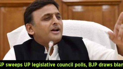 Samajwadi Party (SP) sweeps UP legislative council polls, BJP draws a blank